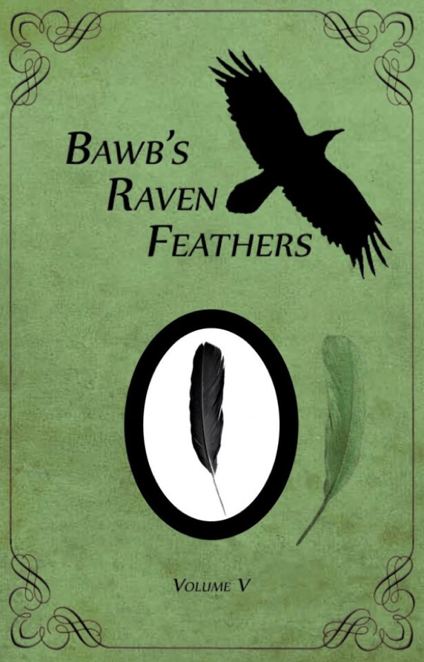 Book- Bawb's raven feathers. Cover with shadow of bird and a black feather below it.